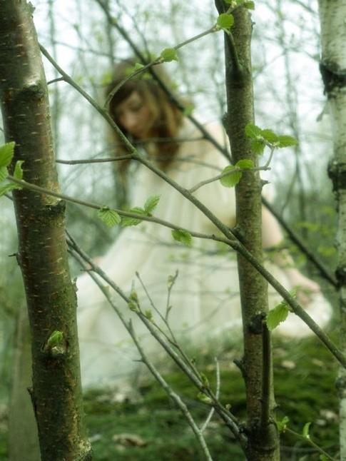 haruko forest 1